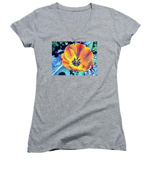 Women's V-Neck T-Shirt featuring the photograph Spring Flower Bloom by Derek Gedney