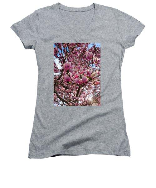 Spring Fractals Women's V-Neck