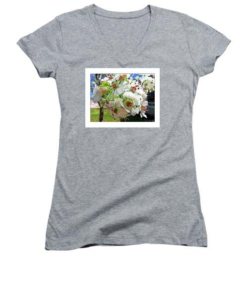 Spring Has Sprung Women's V-Neck T-Shirt (Junior Cut) by Deborah Nakano