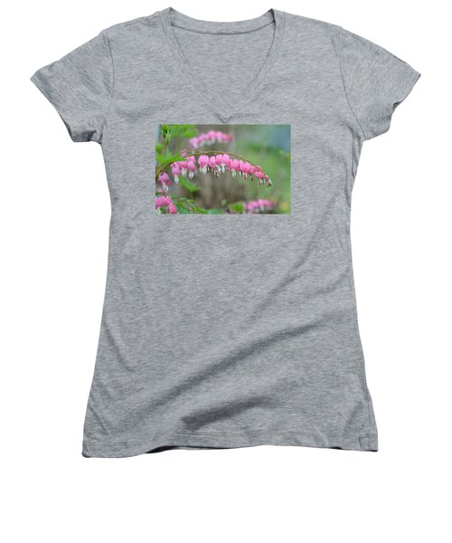 Spring Hearts Women's V-Neck T-Shirt