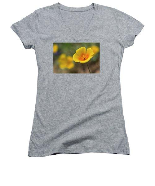 Women's V-Neck T-Shirt (Junior Cut) featuring the photograph Spring Is Beckoning  by Saija Lehtonen