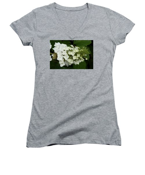Spring Is Busting Out All Over Women's V-Neck