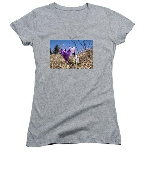 Spring On Bule Women's V-Neck T-Shirt