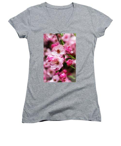 Spring Pink Women's V-Neck T-Shirt (Junior Cut) by Teri Virbickis