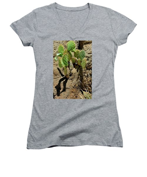 Spring Refreshment Women's V-Neck