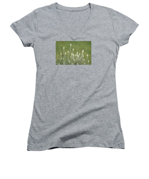 Spring Rockets Women's V-Neck T-Shirt (Junior Cut) by Goyo Ambrosio