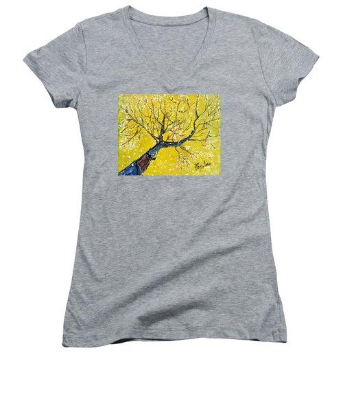 Spring Song Women's V-Neck T-Shirt