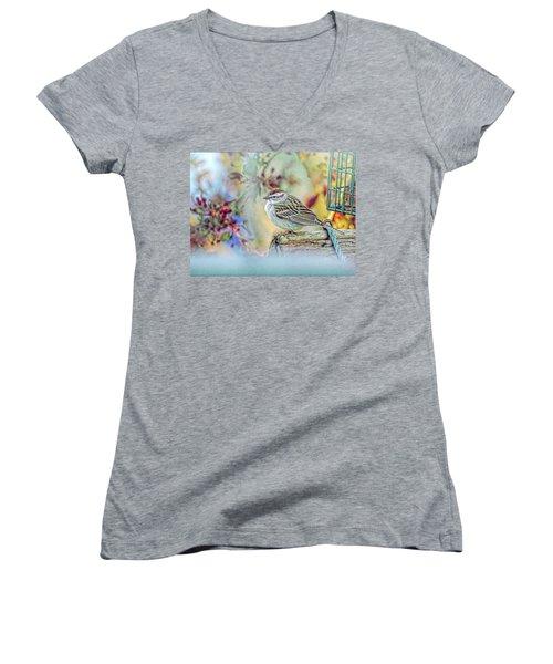 Spring Sparrow Women's V-Neck T-Shirt
