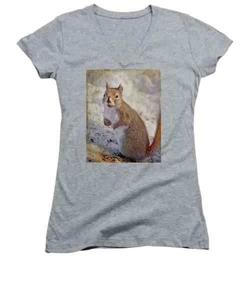 Spring Squirrel Women's V-Neck