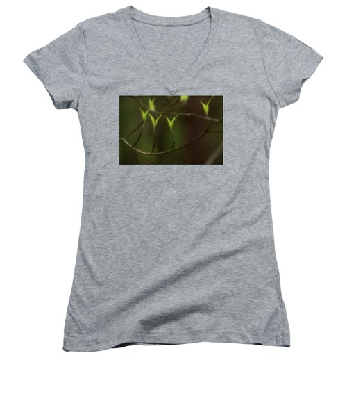 Women's V-Neck T-Shirt (Junior Cut) featuring the photograph Spring Time by Mike Eingle