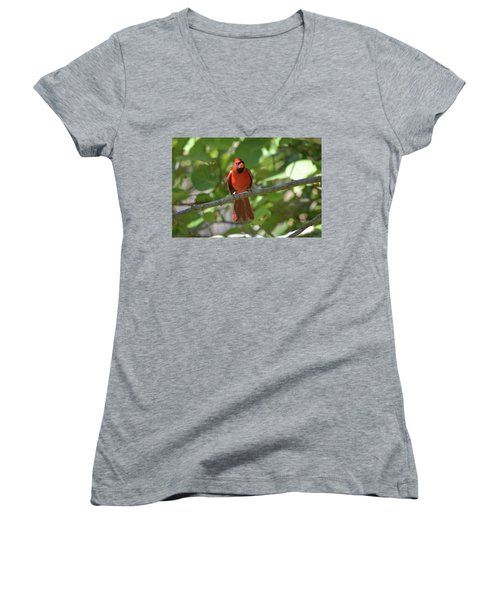 Spring Training Cardinal Women's V-Neck (Athletic Fit)