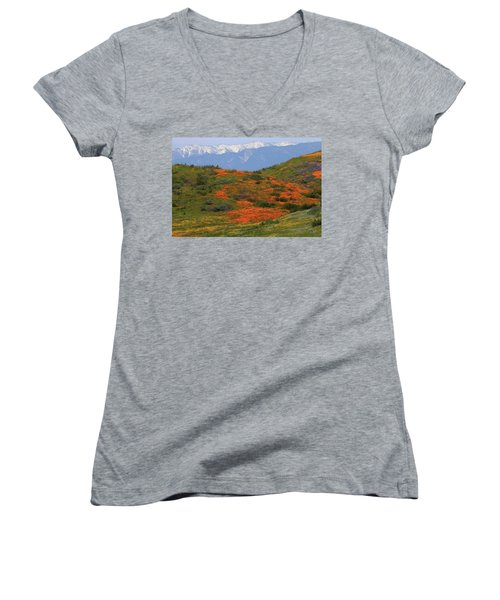 Women's V-Neck T-Shirt (Junior Cut) featuring the photograph Spring Wildflower Display At Diamond Lake In California by Jetson Nguyen