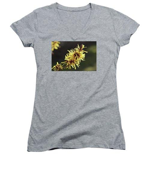 Spring Women's V-Neck T-Shirt (Junior Cut) by Wilhelm Hufnagl