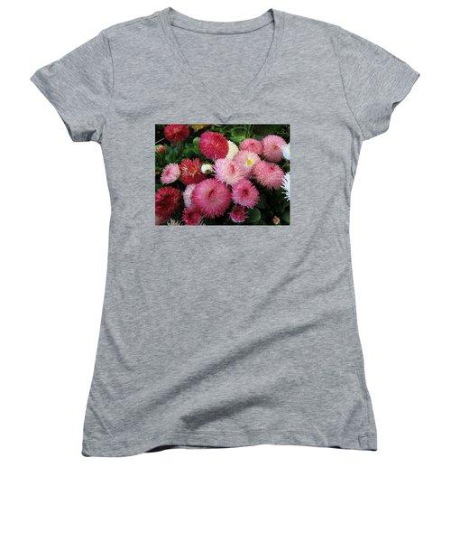 Springsign Women's V-Neck T-Shirt