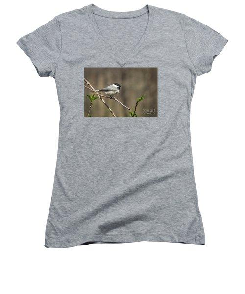 Springtime Chickadee Women's V-Neck T-Shirt