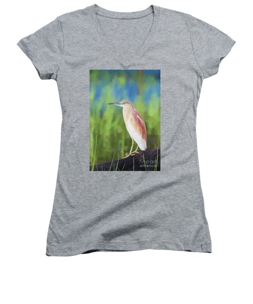 Squacco Heron Ardeola Ralloides Women's V-Neck T-Shirt (Junior Cut) by Liz Leyden