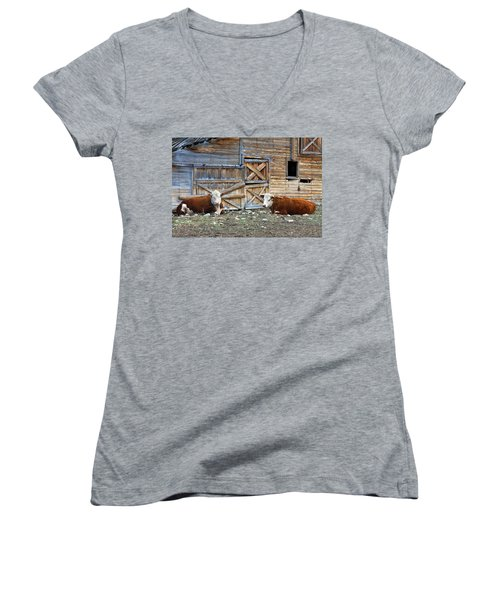 Squires Herefords By The Rustic Barn Women's V-Neck T-Shirt (Junior Cut) by Karon Melillo DeVega