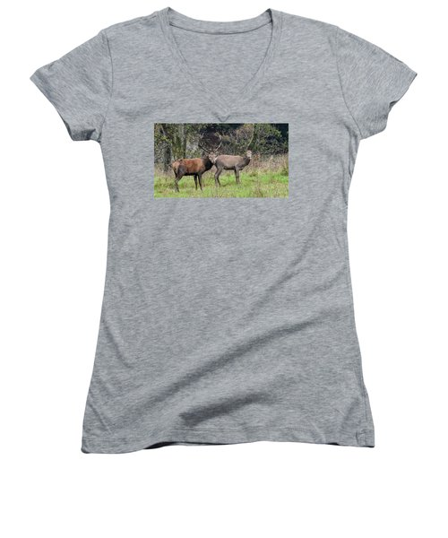 Stag And Doe  Women's V-Neck (Athletic Fit)