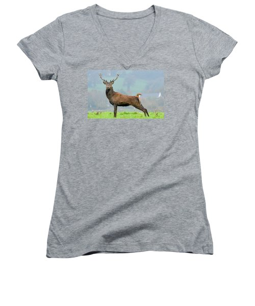 Stag Women's V-Neck (Athletic Fit)