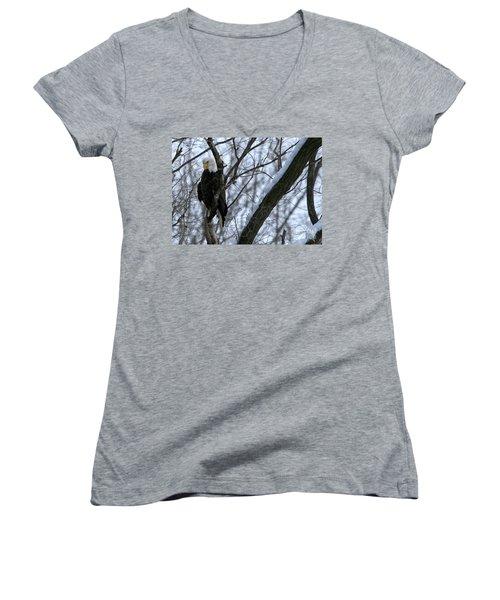 Starved Rock Eagle Women's V-Neck T-Shirt (Junior Cut) by Paula Guttilla