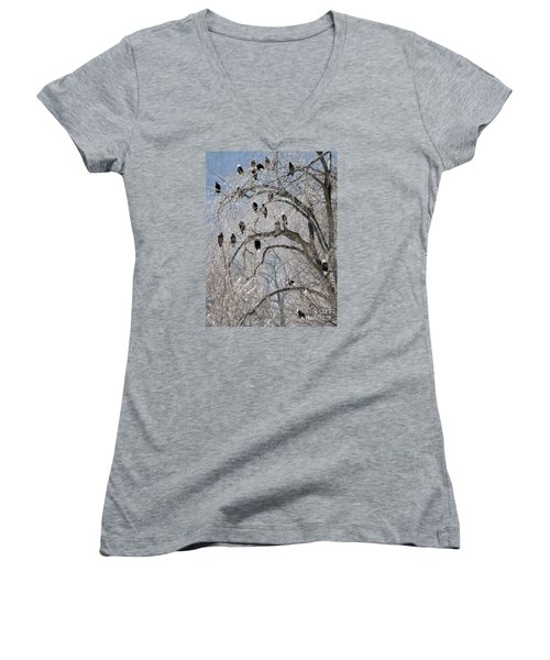 Women's V-Neck T-Shirt (Junior Cut) featuring the photograph Starved Rock Eagles by Paula Guttilla