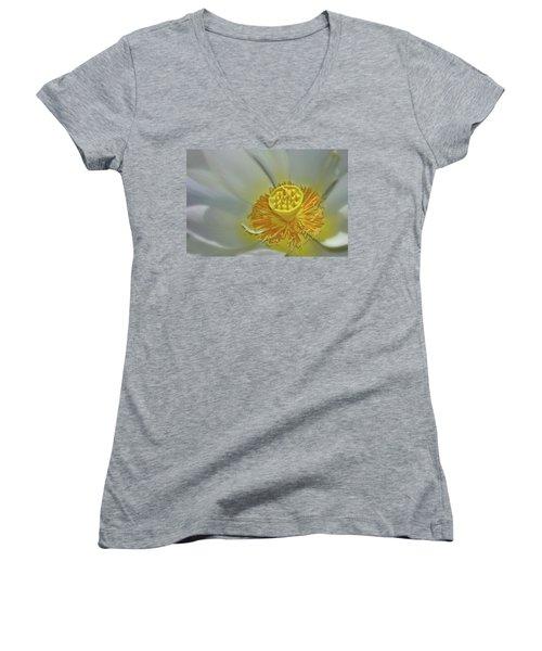 State Of Grace Women's V-Neck T-Shirt