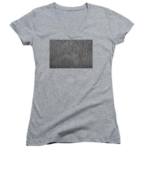 Steel Gray Grass Women's V-Neck T-Shirt (Junior Cut) by Glenn Gemmell