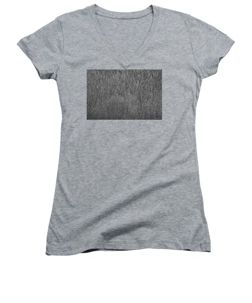Steel Gray Grass Women's V-Neck T-Shirt