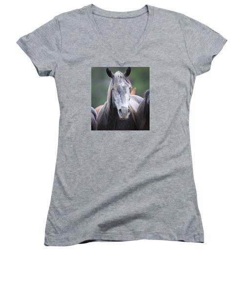 Steel Grey Women's V-Neck T-Shirt (Junior Cut) by Diane Bohna
