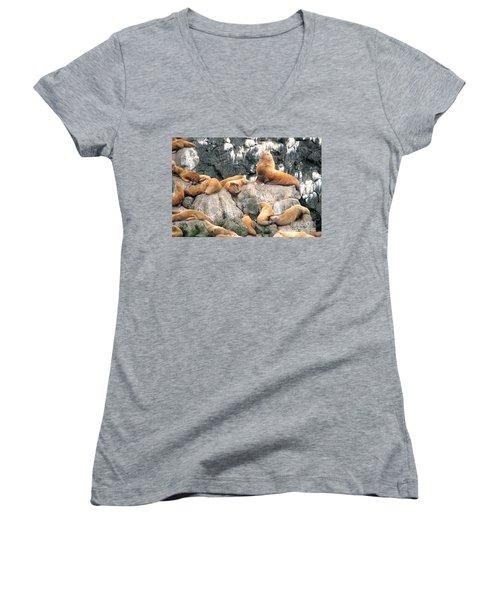 Steller Bull With Harem Women's V-Neck T-Shirt (Junior Cut)