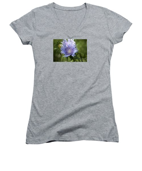 Stokes Aster 20120703_125a Women's V-Neck T-Shirt (Junior Cut) by Tina Hopkins