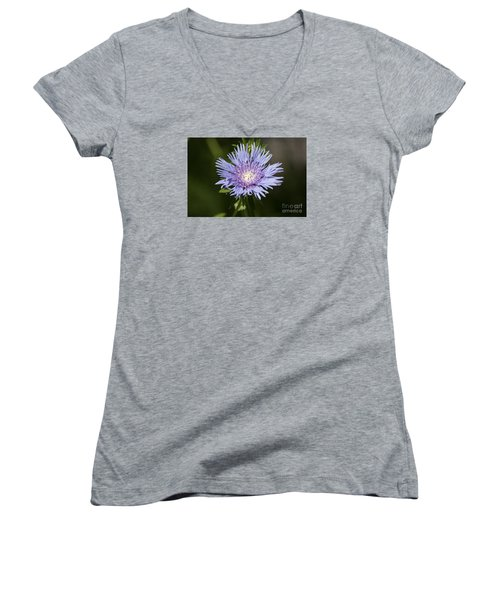 Stokes Aster 20120703_129a Women's V-Neck T-Shirt (Junior Cut) by Tina Hopkins