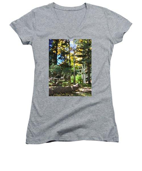 Stone Park Trails Women's V-Neck T-Shirt