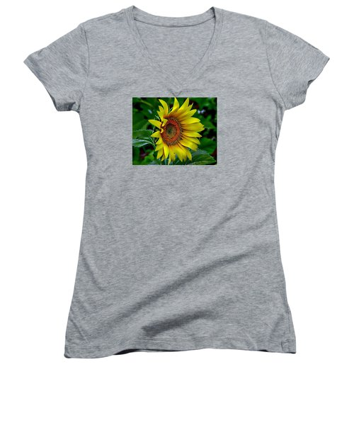 Straight Up Sunflower Women's V-Neck T-Shirt (Junior Cut) by Karen McKenzie McAdoo