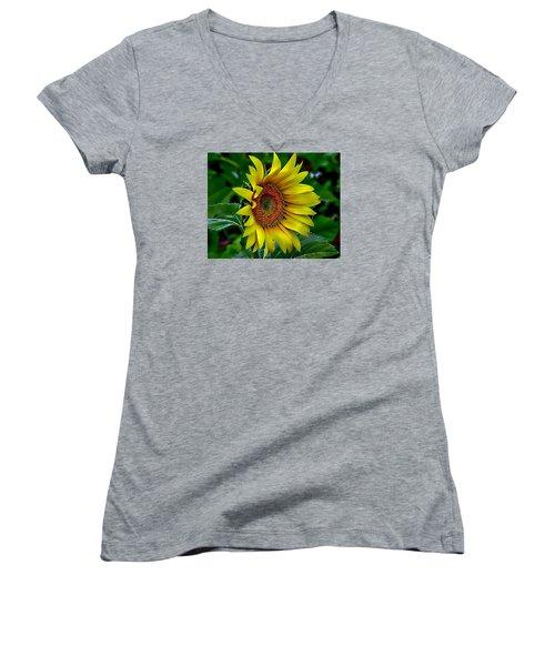 Straight Up Sunflower Women's V-Neck T-Shirt