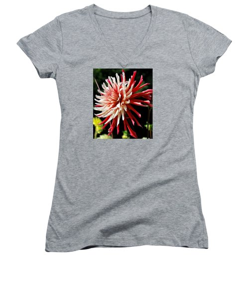 Striking Dahlia Red And White Women's V-Neck T-Shirt