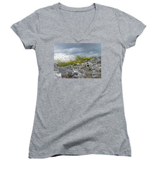Striking Ruins Women's V-Neck T-Shirt (Junior Cut) by Mary Mikawoz