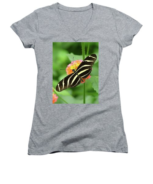 Women's V-Neck T-Shirt (Junior Cut) featuring the photograph Striped Butterfly by Wendy McKennon