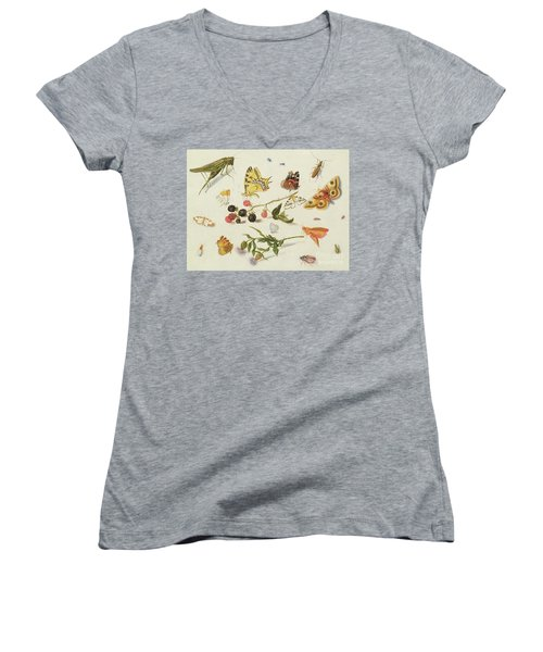 Study Of Insects, Flowers And Fruits, 17th Century Women's V-Neck (Athletic Fit)