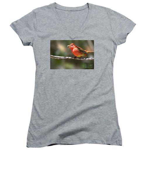 Stuffed Summer Tanager Women's V-Neck