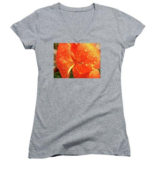 Stunning Canna Lily Women's V-Neck T-Shirt