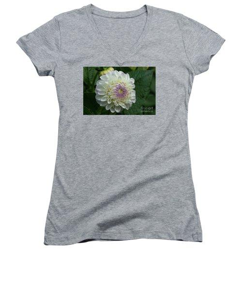 Stunning Gaylen Rose Dahlia Women's V-Neck T-Shirt