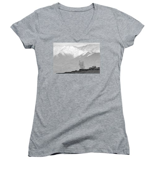 Stupa And Trees Women's V-Neck (Athletic Fit)
