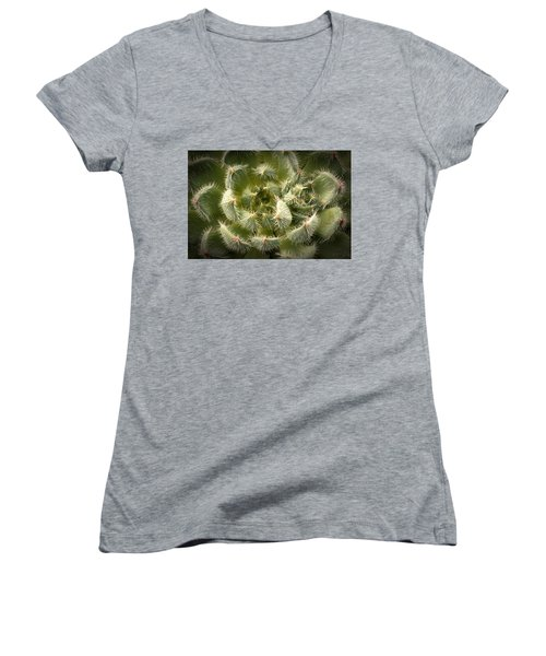 Women's V-Neck T-Shirt (Junior Cut) featuring the photograph Succulent Pride  by Catherine Lau