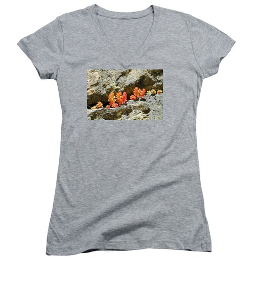 Succulents On The Oregon Coast Women's V-Neck (Athletic Fit)