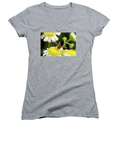 Women's V-Neck T-Shirt (Junior Cut) featuring the photograph Sugar Bee Wings by Meta Gatschenberger
