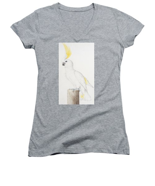 Sulphur Crested Cockatoo Women's V-Neck T-Shirt (Junior Cut) by Nicolas Robert