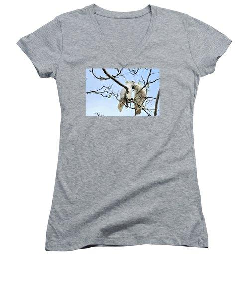 Sulphur Crested Cockatoos Women's V-Neck T-Shirt