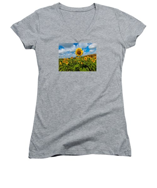 Summer At The Farm Women's V-Neck (Athletic Fit)