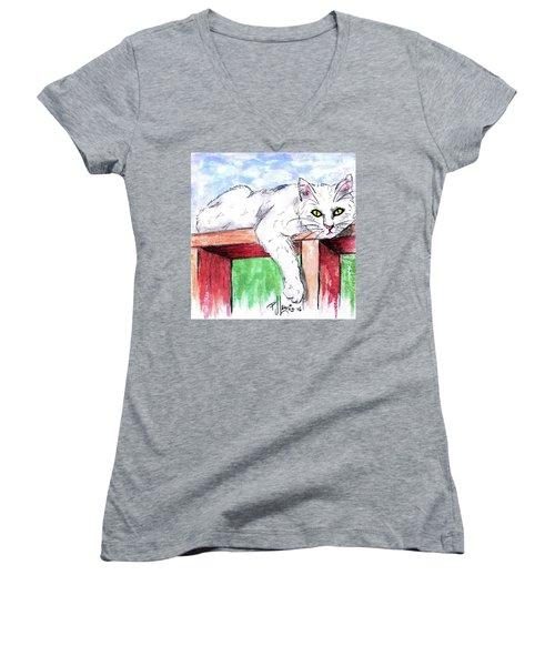 Summer Cat Women's V-Neck T-Shirt (Junior Cut)
